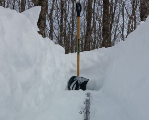 Digging Out Maple Sap Lines